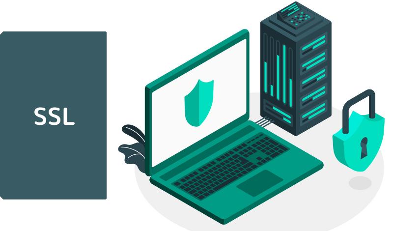 SSL証明書とは?仕組みや種類についてわかりやすく解説